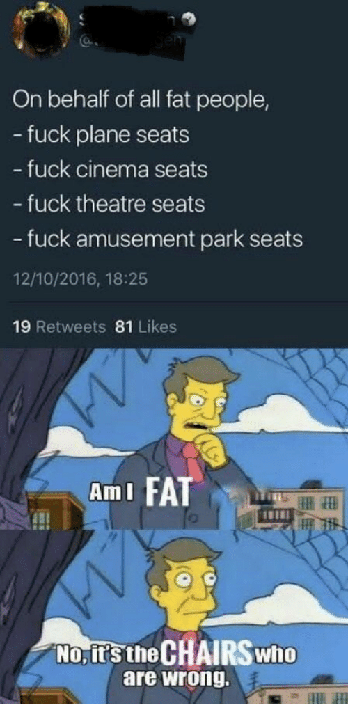 ami: On behalf of all fat people,  - fuck plane seats  fuck cinema seats  - fuck theatre seats  - fuck amusement park seats  12/10/2016, 18:25  19 Retweets 81 Likes  AmI FA  No, it's the CHAIRS who  are wrong.
