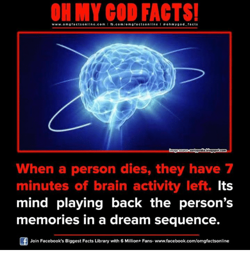 A Dream: ON MY GOD FACTS!  www.omg facts online.com I fb.com  omg facts on  I a oh y god facts  sartypodiablogspotcom  When a person dies, they have 7  minutes of brain activity left. Its  mind playing back the person's  memories in a dream sequence.  Join Facebook's Biggest Facts Library with 6 Million+ Fans. www.facebook.com/omgfactsonline