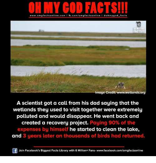 Dad, Facebook, and Facts: ON MY GOD FACTS!!!  www.omg facts online.com I fb.com/omg facts online I Goh my god-facts  OR MY COD  FACTS!  Image Credit: www.wetlands.org  A scientist got a call from his dad saying that the  wetlands they used to visit together were extremely  polluted and would disappear. He went back and  created a recovery project.  Paying 90% of the  expenses by himself he started to clean the lake,  and 3 years later an thousands of birds had returned.  Join Facebook's Biggest Facts Library with 6 Million+ Fans- www.facebook.com/omgfactsonline