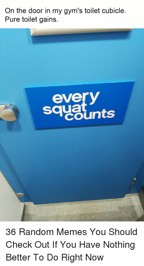 gyms: On the door in my gym's toilet cubicle  Pure toilet gains  sayslnts  everV  squat 36 Random Memes You Should Check Out If You Have Nothing Better To Do Right Now