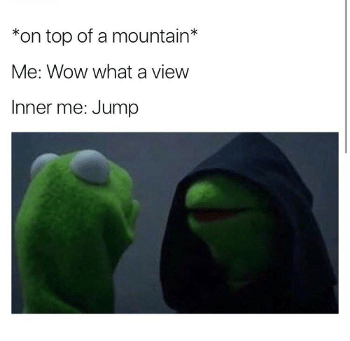 Inner Me: *on top of a mountain*  Me: Wow what a view  Inner me: Jump