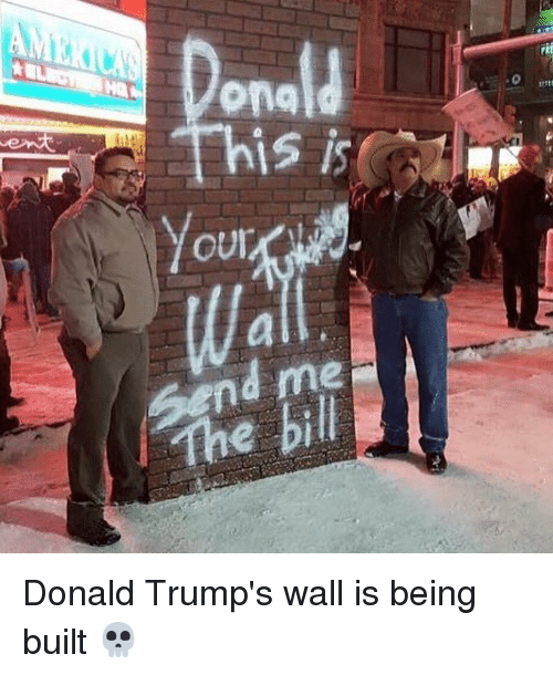Donald Trump's Wall : ona  rt  mtf  send me  The bill  a. Donald Trump's wall is being built 💀