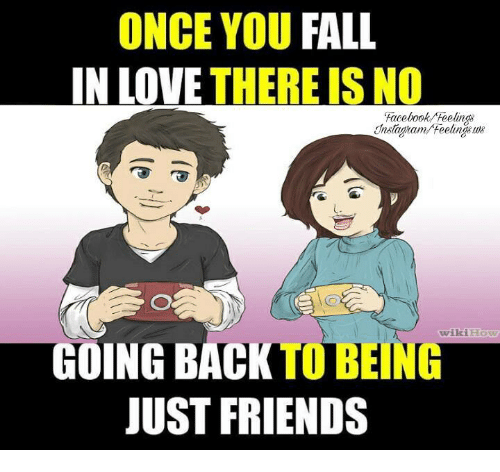 Fall: ONCE YOU FALL  IN LOVE  THERE IS NO  Facebook feelings  GOING BACK BENG  wikiHow  JUST FRIENDS