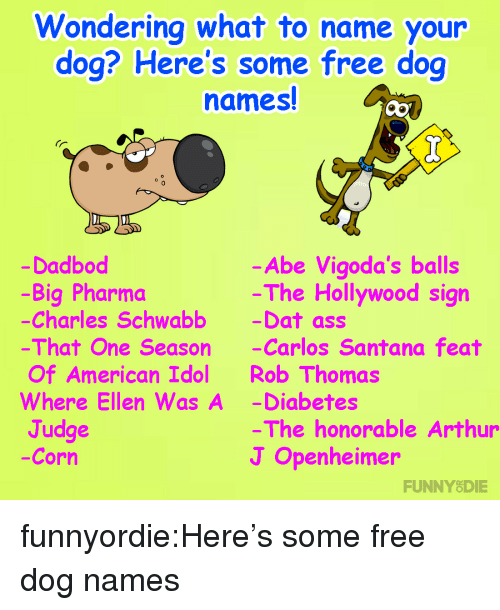 honorable: ondering what to name your  dog? Here's some free dog  names!  0  Dadbod  -Big Pharma  Charles Schwabb -Dat ass  That One Season -Carlos Santana feat  Of American Idol Rob Thomas  Where Ellen Was A -Diabetes  Judge  -Corn  -Abe Vigoda's balls  The Hollywood sign  The honorable Arthur  J Openheimer  FUNNYODIE funnyordie:Here's some free dog names