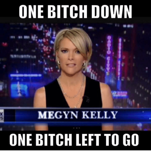 [Image: one-bitch-down-megyn-kelly-one-bitch-lef...310282.png]