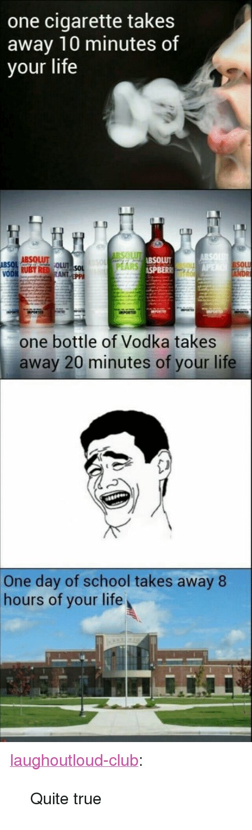 """absolut: one cigarette takes  away 10 minutes of  your life  ABSOLUT  SPBER  SOL  one bottle of Vodka takes  away 20 minutes of your life  One day of school takes away 8  hours of your life <p><a href=""""http://laughoutloud-club.tumblr.com/post/159380773052/quite-true"""" class=""""tumblr_blog"""">laughoutloud-club</a>:</p>  <blockquote><p>Quite true</p></blockquote>"""