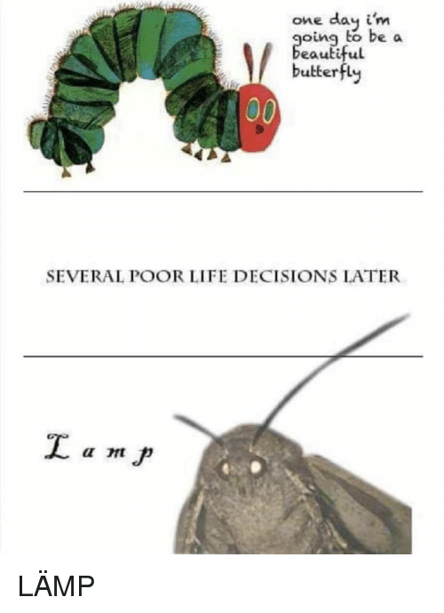 Oing: one day i'm  oing to be a  eauti  ful  butterfly  SEVERAL POOR LIFE DECISIONS LATER LÄMP