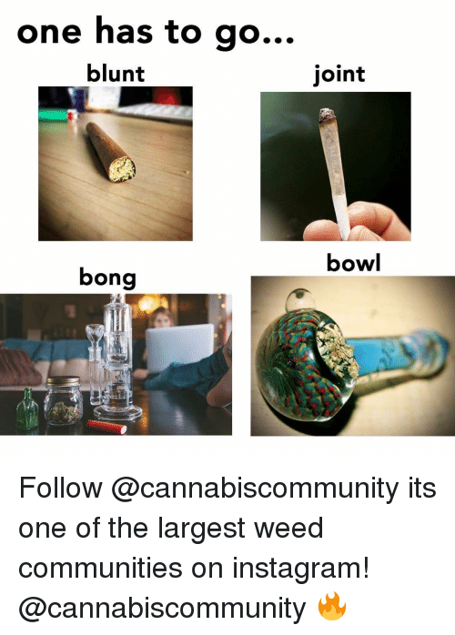 Instagram, Weed, and Marijuana: one has to go.  ..  blunt  joint  bowl  bong Follow @cannabiscommunity its one of the largest weed communities on instagram! @cannabiscommunity 🔥