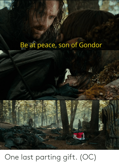 Parting: One last parting gift. (OC)