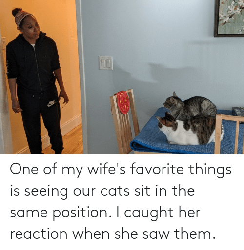 Sit In: One of my wife's favorite things is seeing our cats sit in the same position. I caught her reaction when she saw them.