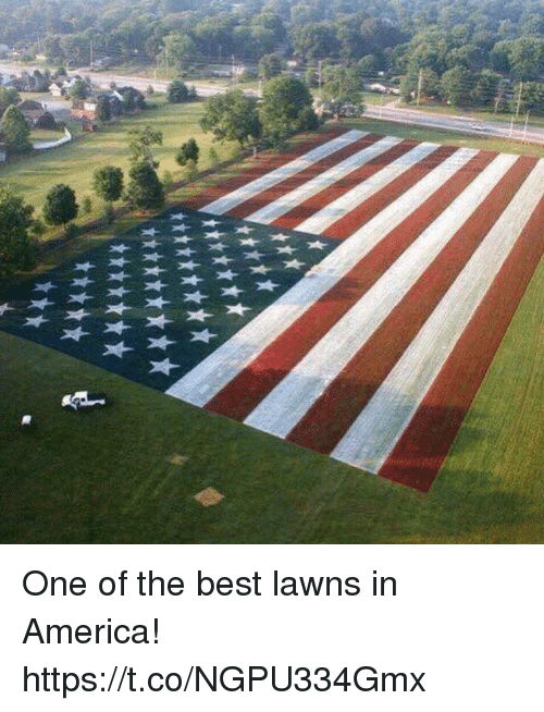 America, Memes, and Best: One of the best lawns in America! https://t.co/NGPU334Gmx