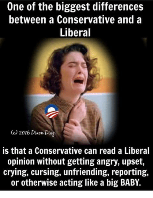 Crying, Memes, and Conservative: One of the biggest differences  between a Conservative and a  Liberal  2016 Dine Dag  is that a Conservative can read a Liberal  opinion without getting angry, upset,  crying, cursing, unfriending, reporting,  or otherwise acting like a big BABY.