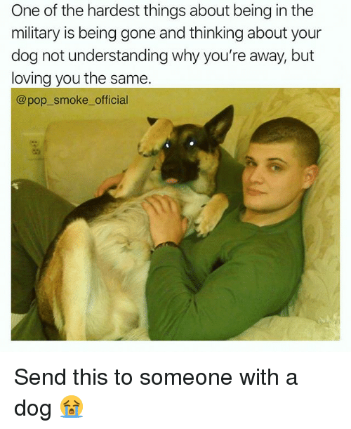 Memes, Pop, and Military: One of the hardest things about being in the  military is being gone and thinking about your  dog not understanding why you're away, but  loving you the samee  @pop_smoke_ official Send this to someone with a dog 😭