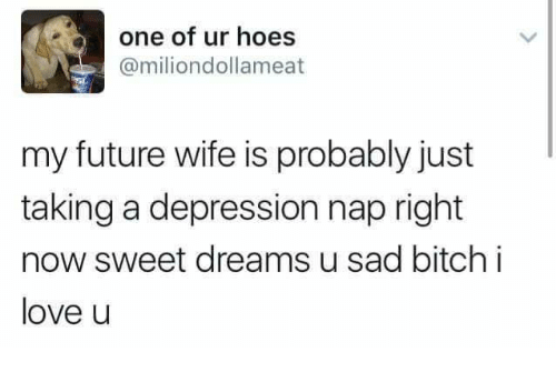 Memes, 🤖, and Sadness: one of ur hoes  @miliondollameat  my future wife is probably just  taking a depression nap right  now sweet dreams u sad bitch i  love u