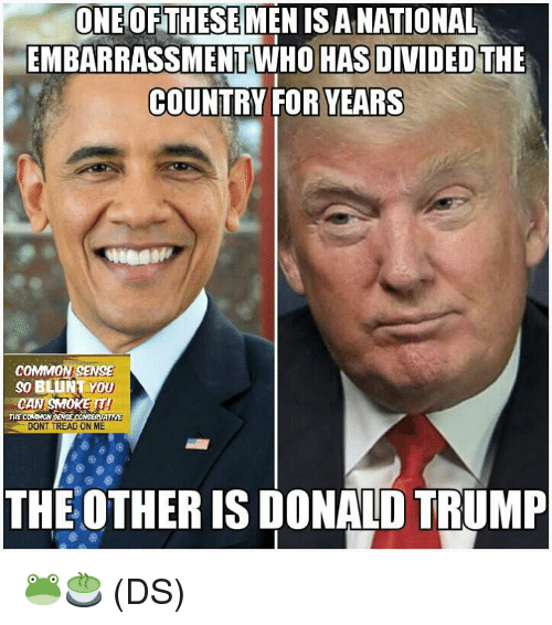 Donald Trump, Memes, and Common: ONE OFTHESE  MENISANATIONAL  EMBARRASSMENT WHO HAS DIVIDEOTHE  COUNTRY FOR YEARS  COMMON SENSE  SO BLUNT YOU  CAN SMOKETI  THE COMMONS  ATWE  DONT TREAD ON ME  THE OTHER IS DONALD TRUMP 🐸🍵 (DS)