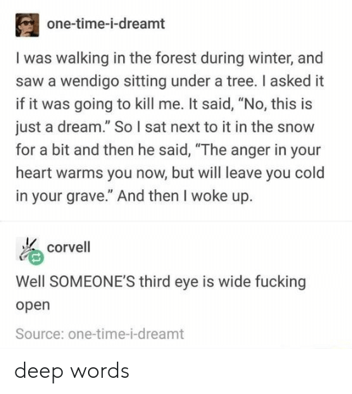 """And Then He Said: one-time-i-dreamt  I was walking in the forest during winter, and  saw a wendigo sitting under a tree. I asked it  if it was going to kill me. It said, """"No, this is  just a dream."""" So I sat next to it in the snow  for a bit and then he said, """"The anger in your  heart warms you now, but will leave you cold  in your grave."""" And then I woke up.  corvell  Well SOMEONE'S third eye is wide fucking  open  Source: one-time-i-dreamt deep words"""