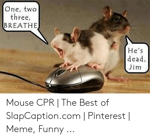 Cpr Meme: One, two  three,  BREATHE  He's  dead  Jim Mouse CPR | The Best of SlapCaption.com | Pinterest | Meme, Funny ...