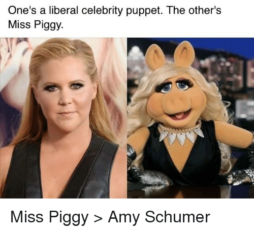 Amy Schumer, Memes, and Miss Piggy: One's a liberal celebrity puppet. The other's  Miss Piggy. Miss Piggy > Amy Schumer
