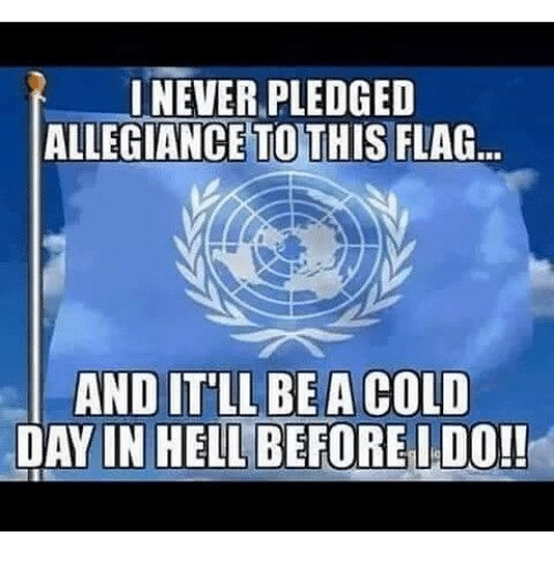 Memes, Cold, and Hell: ONEVER PLEDGED  ALLEGIANCE TOTHIS FLAG  AND IT'LL BE A COLD  DAY IN HELL BEFORE I DO!!