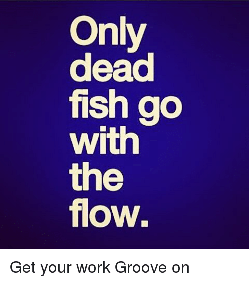 Funny dead fish memes of 2017 on sizzle bloods for What goes good with fish