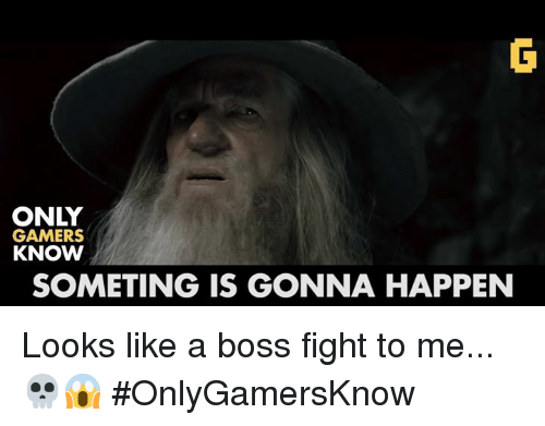 Video Games, Boss, and Gamer: ONLY  GAMERS  KNOW  SOMETING IS GONNA HAPPEN Looks like a boss fight to me... 💀😱 #OnlyGamersKnow