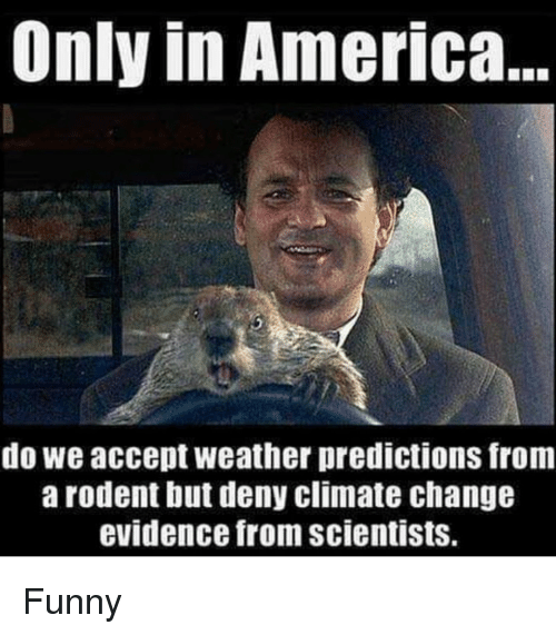 Predictions: Only in America  do we accept weather predictions from  arodent but deny climate change  evidence from scientists. Funny