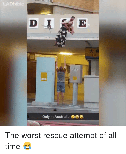 Memes, The Worst, and 🤖: Only in Australia 5ee The worst rescue attempt of all time 😂