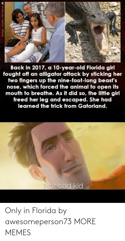 Florida: Only in Florida by awesomeperson73 MORE MEMES