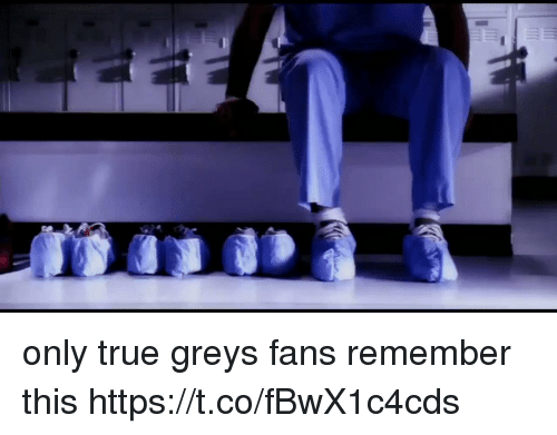 Memes, True, and 🤖: only true greys fans remember this https://t.co/fBwX1c4cds