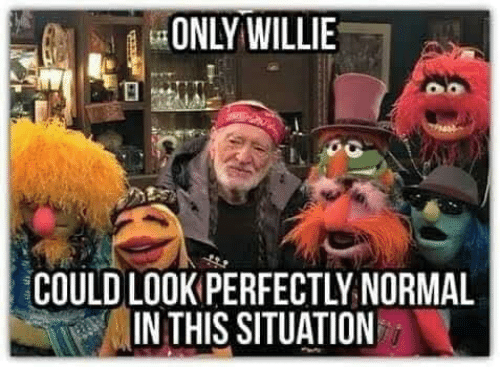 Memes, 🤖, and Normal: ONLY WILLIE  COULD LOOK PERFECTLY NORMAL  IN THIS SITUATION