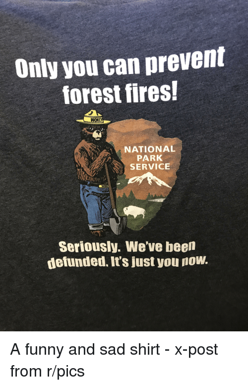 how can we prevent forest fires Harvesting trees will prevent fires  the size, intensity and harm caused annually by the past decade's forest fires are almost entirely of human origin: federal mismanagement of our national .