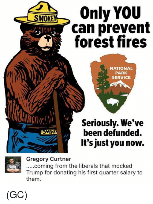 service: Only YOU  SMOK  can prevent  forest fires  NATIONAL  PARK  SERVICE  Seriously. We've  been defunded.  It's just you now.  Gregory Curtner  .....coming from the liberals that mocked  Trump for donating his first quarter salary to  them. (GC)