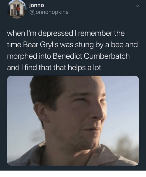 Benedict Cumberbatch: onno  @jonnohopkins  when I'm depressed I remember the  time Bear Grylls was stung by a bee and  morphed into Benedict Cumberbatch  and I find that that helps a lot