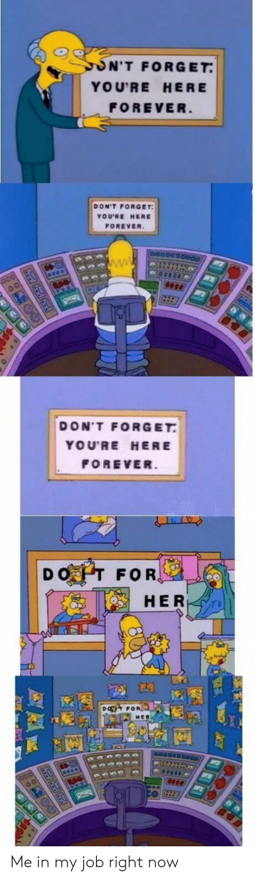Youre Here Forever: ON'T FORGET  YOU'RE HERE  FOREVER  DON'T FORGET  YOU'RE HERE  FOREVER.  DON'T FORGET  YOU'RE HERE  FOREVER.  DOT FOR,  HER  DO FOR Me in my job right now