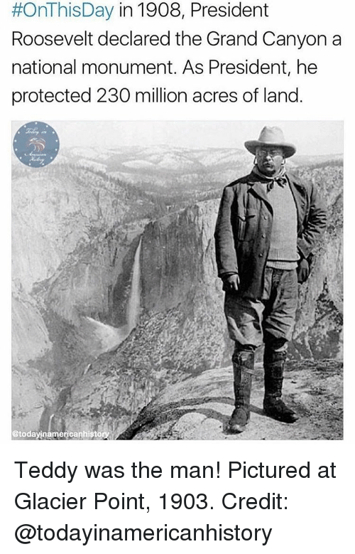 the grand canyon:  #OnThisDay in 1908, President  Roosevelt declared the Grand Canyon a  national monument. As President, he  protected 230 million acres of land.  etodayinamericanhiston Teddy was the man! Pictured at Glacier Point, 1903. Credit: @todayinamericanhistory