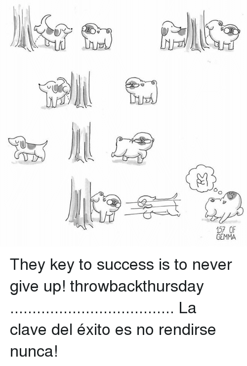 Memes, Never, and Success: OO  157 OF  GEMMA They key to success is to never give up! throwbackthursday ..................................... La clave del éxito es no rendirse nunca!