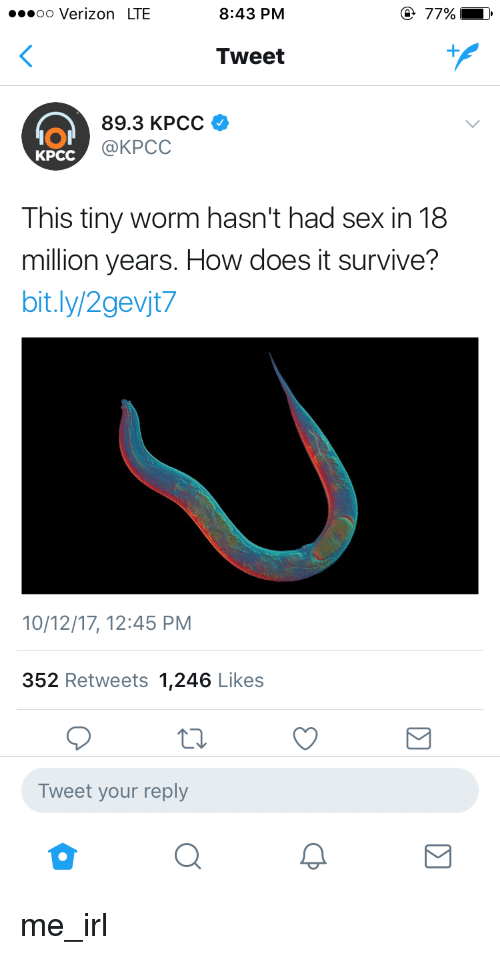 Sex, Verizon, and Irl: oo Verizon LTE  8:43 PM  77%  Tweet  IOI  KPCC  89.3 KPCC  @KPCC  This tiny worm hasn't had sex in 18  million years. How does it survive?  bit.ly/2gevjt7  10/12/17, 12:45 PM  352 Retweets 1,246 Likes  Tweet your reply me_irl