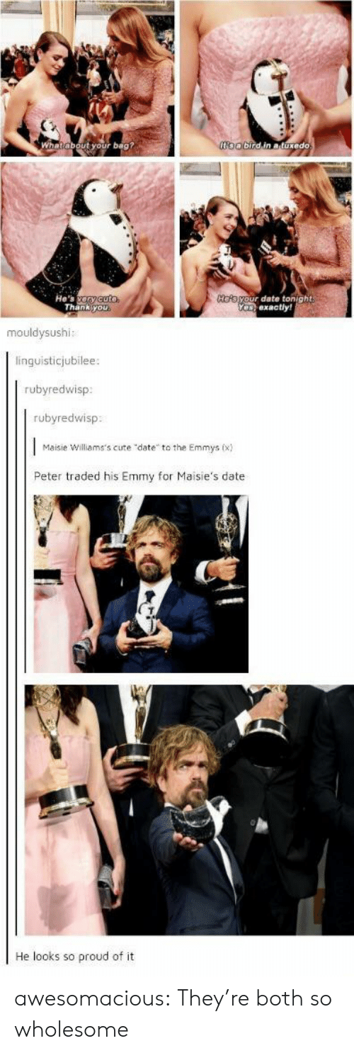 """emmy: oobirdin atuxedo  ut your bag?  He's ary cuto  Thank you  HOAayour date tonight  Yeexactly!  mouldysushi:  linguisticjubilee:  rubyredwisp  rubyredwisp  Maisie Williams's cute """"date to the Emmys (x)  Peter traded his Emmy for Maisie's date  He looks so proud of it awesomacious:  They're both so wholesome"""