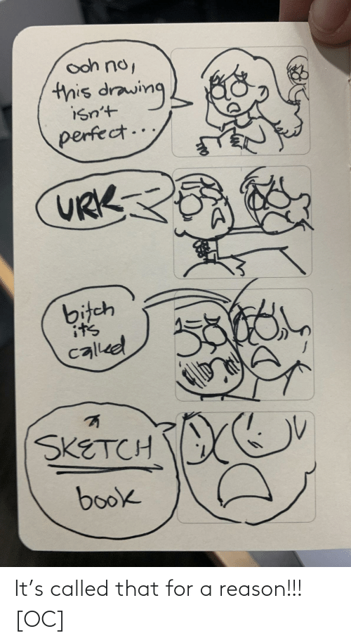 sketch: ooh no,  this drawing  isn't  perfect..  URK  bitch  it's  called  SKETCH  book It's called that for a reason!!! [OC]