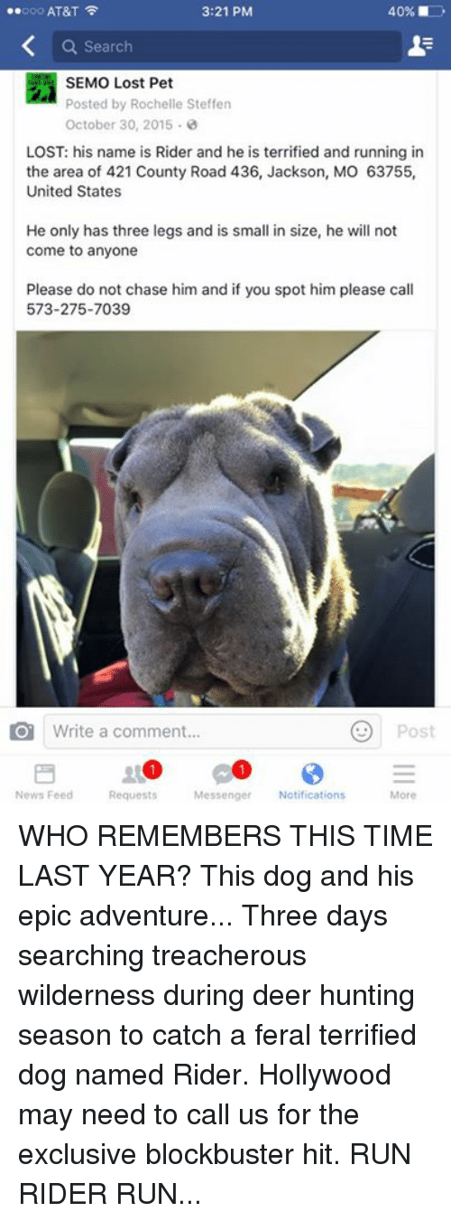 Blockbuster, Deer, and Memes: ..ooo AT&T F  3:21 PM  40%  Search  SEMO Lost Pet  Posted by Rochelle Steffen  October 30, 2015 0  LOST: his name is Rider and he is terrified and running in  the area of 421 County Road 436, Jackson, MO 63755,  United States  He only has three legs and is small in size, he will not  Come to anyone  Please do not chase him and if you spot him please call  573-275-7039  CO Write a comment...  Post  News Feed  Messenger Notifications  More  Requests WHO REMEMBERS THIS TIME LAST YEAR? This dog and his epic adventure... Three days searching treacherous wilderness during deer hunting season to catch a feral terrified dog named Rider. Hollywood may need to call us for the exclusive blockbuster hit. RUN RIDER RUN...