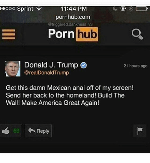 America, Memes, and Porn Hub: OOO Sprint  11:44 PM  pornhub.com  @triggered dankness v3  Porn  hub  Donald J. Trump  21 hours ago  @real DonaldTrump  Get this damn Mexican anal off of my screen!  Send her back to the homeland! Build The  Wall! Make America Great Again!  69 Reply