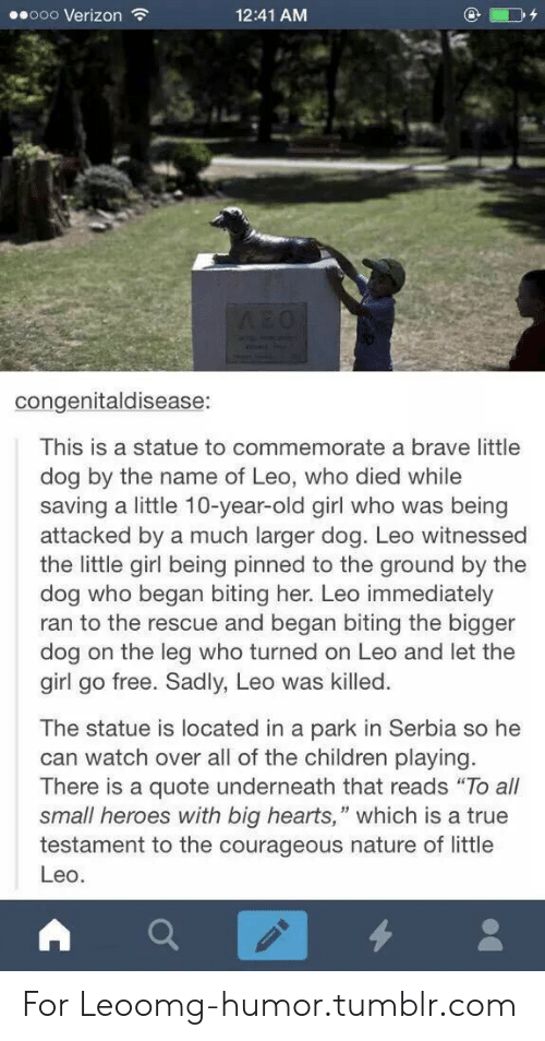 "Brave Little: ooo Verizon  12:41 AM  AEO  congenitaldisease:  This is a statue to commemorate a brave little  dog by the name of Leo, who died while  saving a little 10-year-old girl who was being  attacked by a much larger dog. Leo witnessed  the little girl being pinned to the ground by the  dog who began biting her. Leo immediately  ran to the rescue and began biting the bigger  dog on the leg who turned on Leo and let the  girl go free. Sadly, Leo was killed  The statue is located in a park in Serbia so he  can watch over all of the children playing.  There is a quote underneath that reads ""To all  small heroes with big hearts,"" which is a true  testament to the courageous nature of little  Leo. For Leoomg-humor.tumblr.com"
