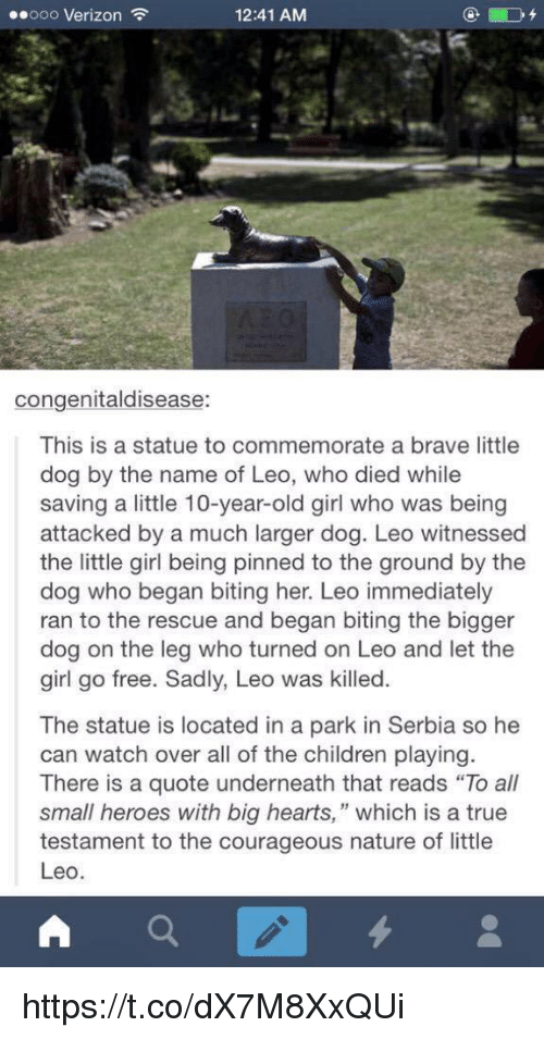 """Serbia: ..ooo Verizon  12:41 AM  congenitaldisease:  This is a statue to commemorate a brave little  dog by the name of Leo, who died while  saving a little 10-year-old girl who was being  attacked by a much larger dog. Leo witnessed  the little girl being pinned to the ground by the  dog who began biting her. Leo immediately  ran to the rescue and began biting the bigger  dog on the leg who turned on Leo and let the  girl go free. Sadly, Leo was killed  The statue is located in a park in Serbia so he  can watch over all of the children playing  There is a quote underneath that reads """"To all  small heroes with big hearts,"""" which is a true  testament to the courageous nature of little  Leo  A https://t.co/dX7M8XxQUi"""