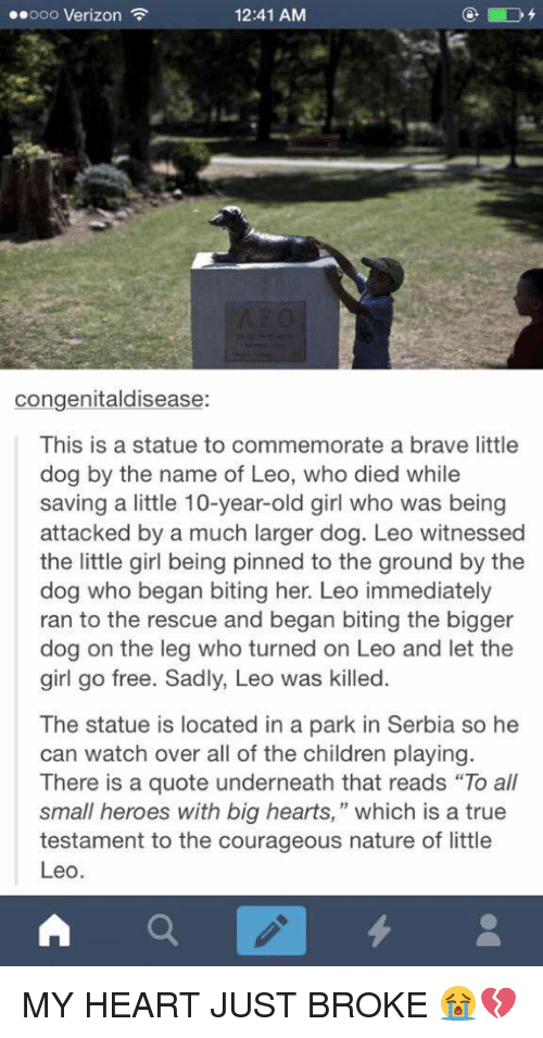 """Serbia: ..ooo Verizon  12:41 AM  congenitaldisease:  This is a statue to commemorate a brave little  dog by the name of Leo, who died while  saving a little 10-year-old girl who was being  attacked by a much larger dog. Leo witnessed  the little girl being pinned to the ground by the  dog who began biting her. Leo immediately  ran to the rescue and began biting the bigger  dog on the leg who turned on Leo and let the  girl go free. Sadly, Leo was killed  The statue is located in a park in Serbia so he  can watch over all of the children playing  There is a quote underneath that reads """"To all  small heroes with big hearts,"""" which is a true  testament to the courageous nature of little  Leo  A MY HEART JUST BROKE 😭💔"""