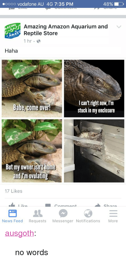 """oooo: oooo vodafone AU 4G 7:35 PM  48% 10  Amazing Amazon Aquarium and  Reptile Store  1 hr.e  Haha  I can't right now, Im  stuck in my enclosure  abe come over!  But my owner isn'tiome  nd I'm ovulating  17 Likes  Like  mmant  Char  News Feed Requests Messenger Notifications More <p><a class=""""tumblr_blog"""" href=""""http://ausgoth.tumblr.com/post/145954465117"""" target=""""_blank"""">ausgoth</a>:</p><blockquote> <p>no words</p> </blockquote>"""