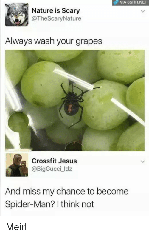 I Think Not: OP VIA 8SHIT.NET  Nature is Scary  @TheScaryNature  Always wash your grapes  Crossfit Jesus  @BigGucci ldz  And miss my chance to become  Spider-Man? I think not Meirl