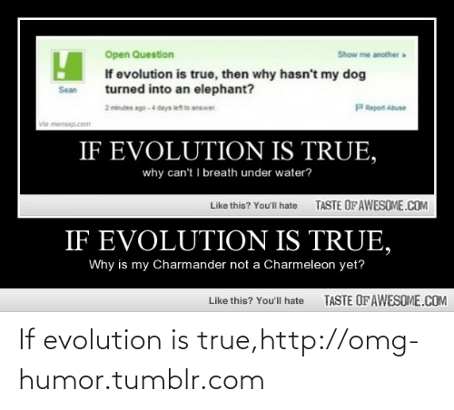 charmeleon: Open Question  Show me another»  If evolution is true, then why hasn't my dog  turned into an elephant?  Sean  2 miutes ago -4 days letto answar.  PReport Abuse  Via mensxp.com  IF EVOLUTION IS TRUE,  why can't I breath under water?  TASTE OFAWESOME.COM  Like this? You'll hate  IF EVOLUTION IS TRUE,  Why is my Charmander not a Charmeleon yet?  TASTE OF AWESOME.COM  Like this? You'll hate If evolution is true,http://omg-humor.tumblr.com