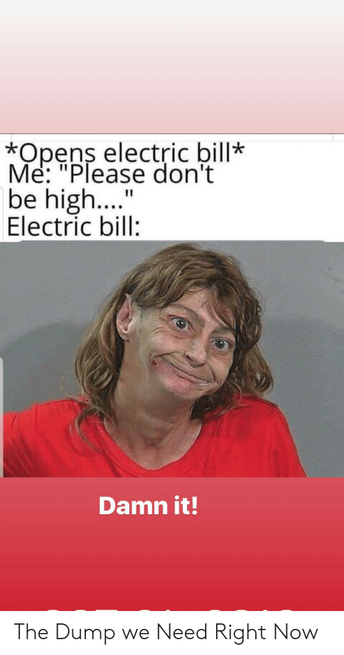 "the dump: *Opens electric bill*  Me: ""Please don't  be high....  Electric bill:  Damn it! The Dump we Need Right Now"