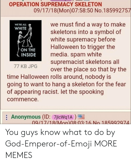white supremacist: OPERATION SUPREMACY SKELETON  09/17/18(Mon)07:58:50 No.185992757  we must find a way to make  skeletons into a symbol of  white supremacy before  Halloween to trigger the  media. spam white  supremacist skeletons all  over the place so that by the  WE'RE ALL  WHITE  ON THE  INSIDE  77 KB JPG  time Halloween rolls around, nobody is  going to want to hang a skeleton for the fear  of appearing racist. let the spooking  commence.  Anonymous (ID: 7jlcWq1A)  09/17/18(Mon 08:03 16 No 185992974 You guys know what to do by God-Emperor-of-Emoji MORE MEMES
