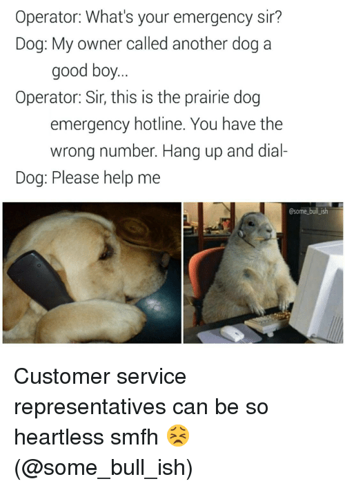 Memes, Bulls, and Help: Operator: What's your emergency sir?  Dog: My owner called another dog a  good boy  Operator: Sir, thIS IS the prairie dog  emergency hotline. You have the  wrong number. Hang up and dial-  Dog: Please help me  Osome bull ish Customer service representatives can be so heartless smfh 😣 (@some_bull_ish)